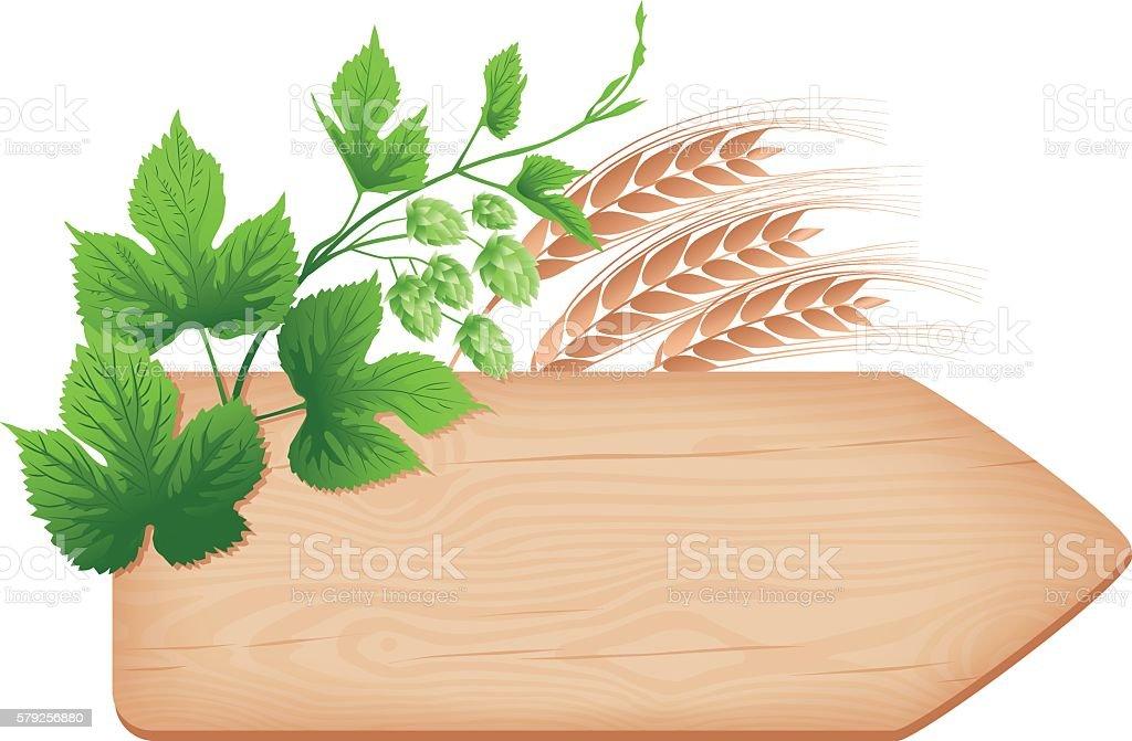 Wooden arrow signboard, hop branch and barley vector art illustration