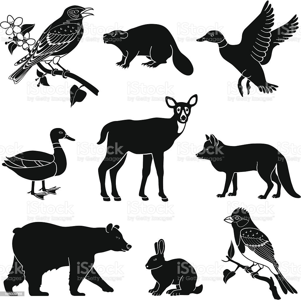woodland animals royalty-free stock vector art