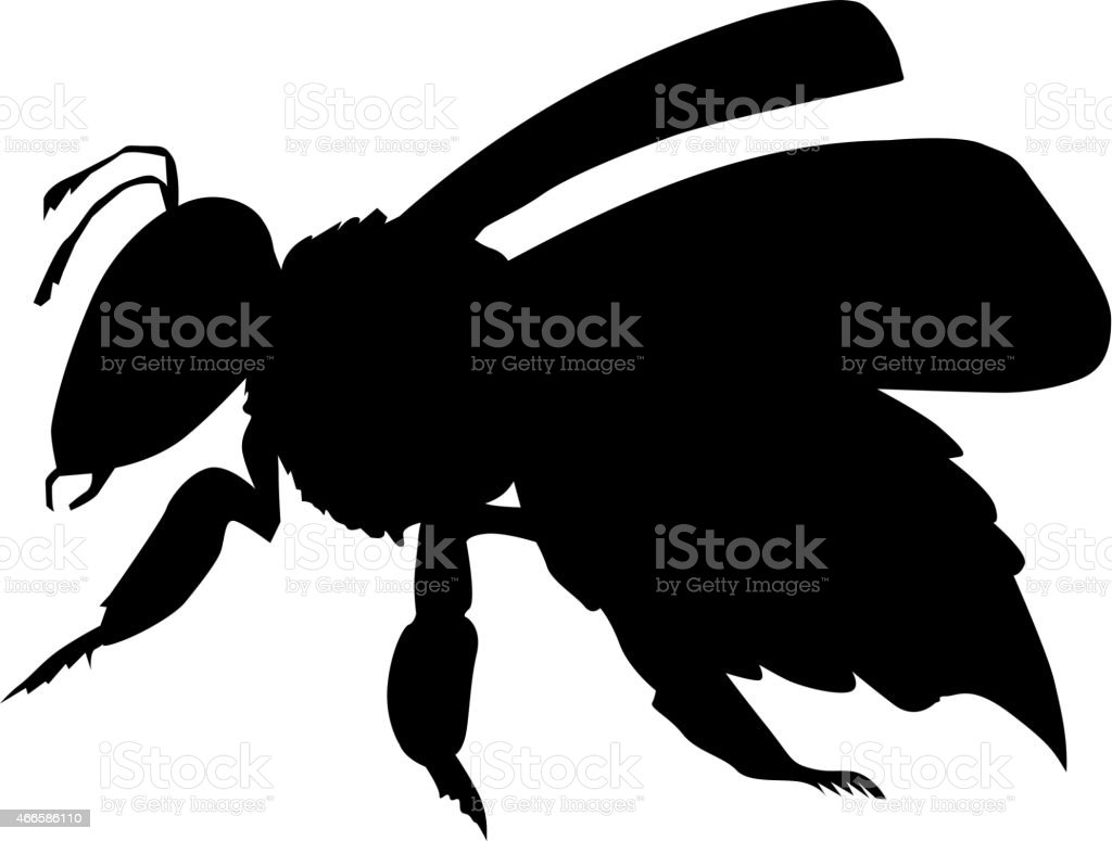 working bee vector art illustration