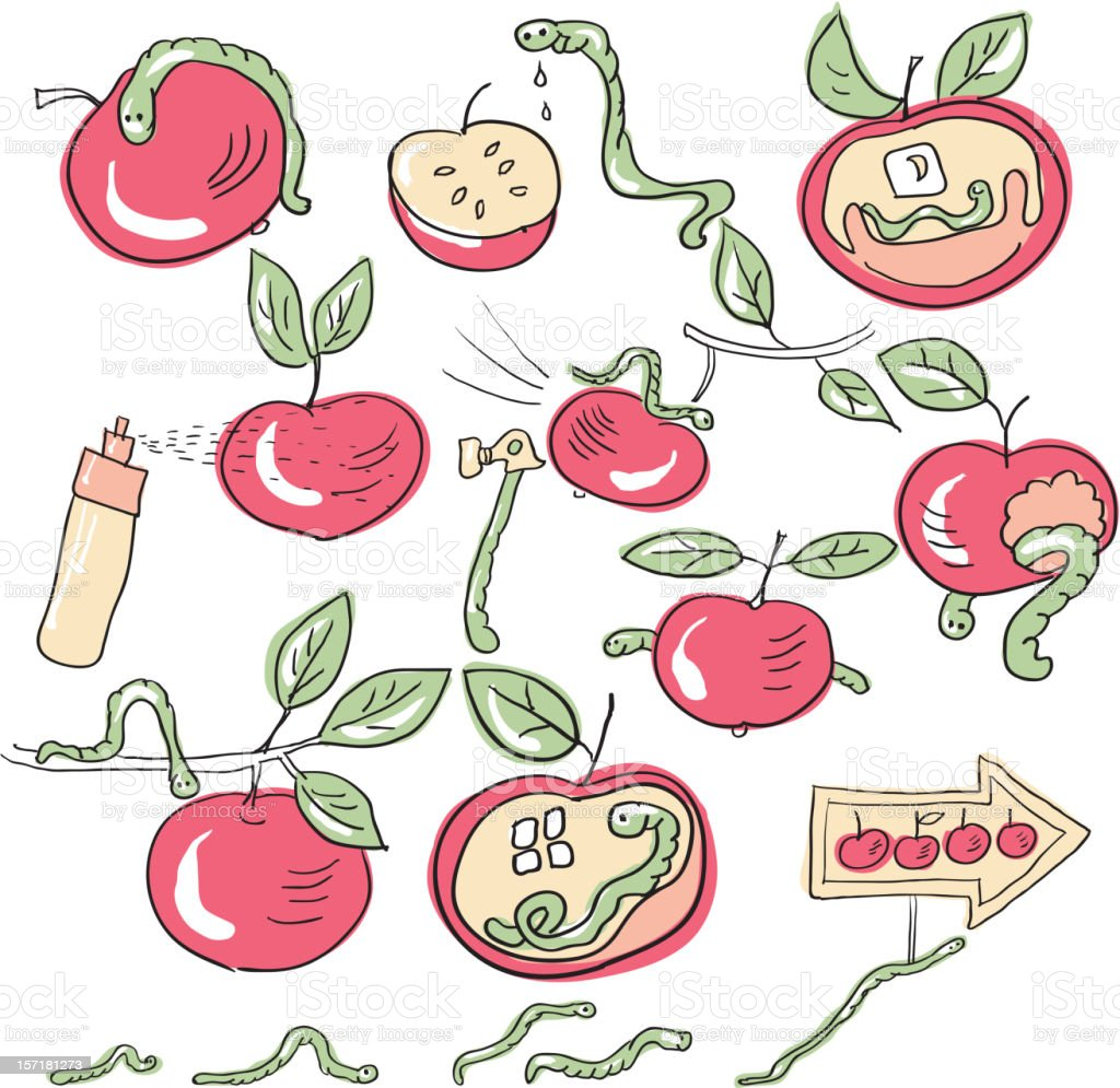 worms and apples royalty-free stock vector art