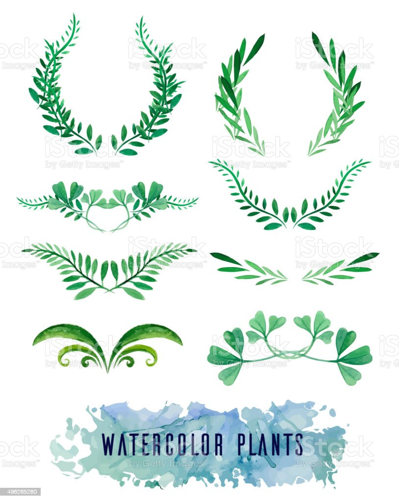 Wreaths and framework of watercolors of plants vector art illustration
