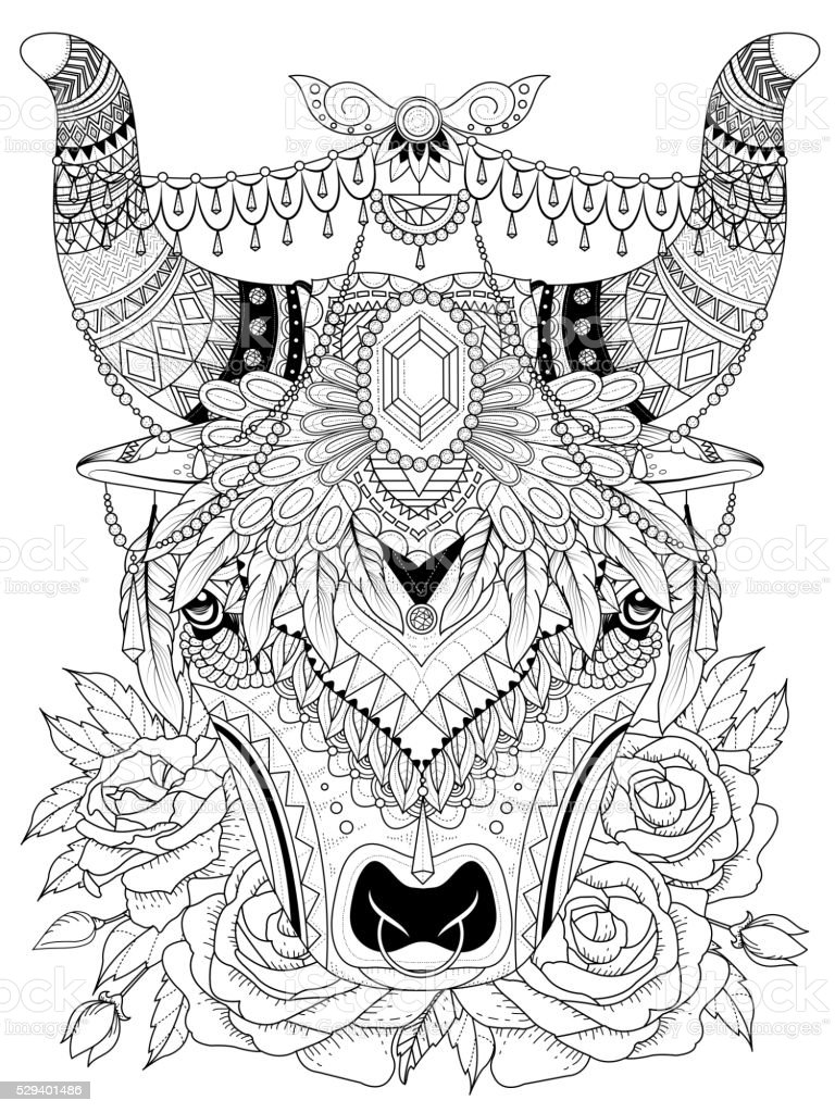 Yak Adult Coloring Page Royalty Free Stock Vector Art
