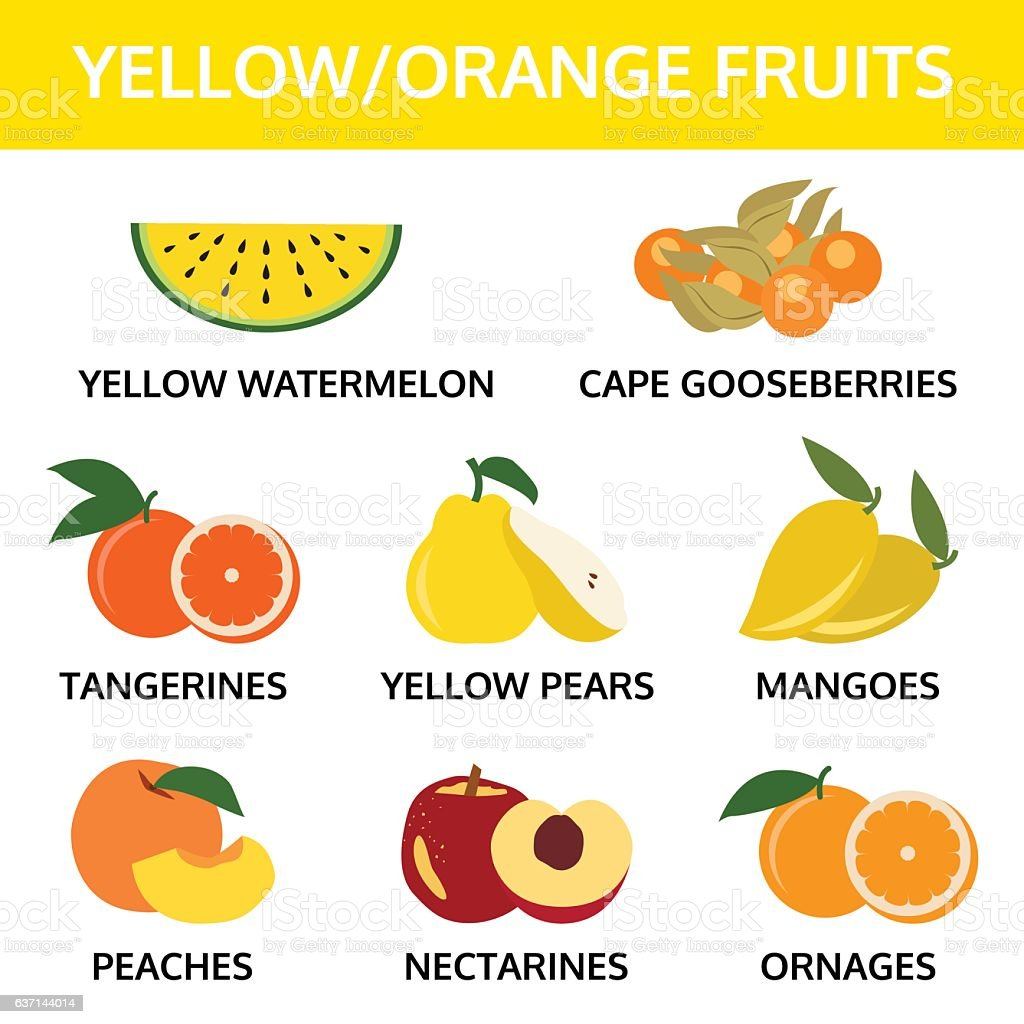 yellow and orange fruits collection info graphic, food vector illustration vector art illustration