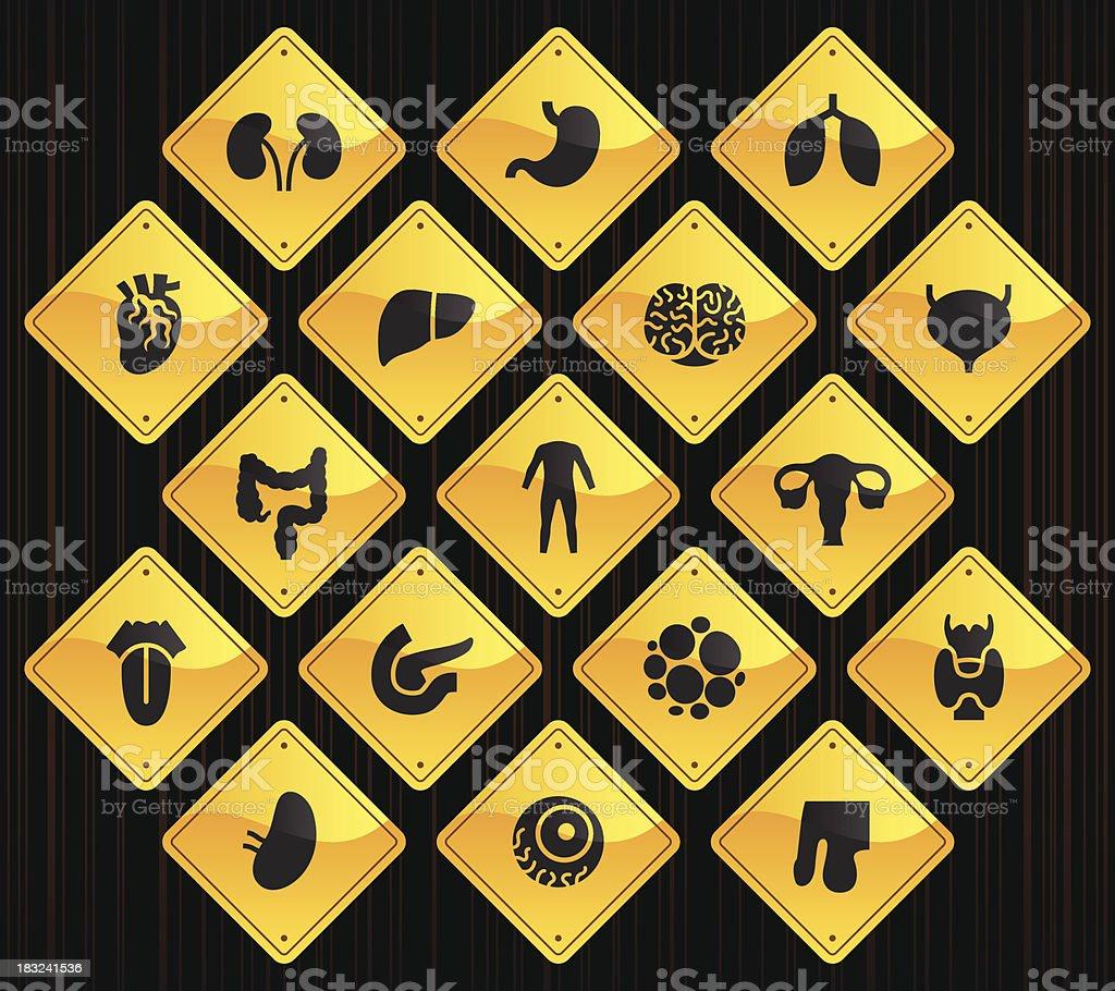 Yellow Road Signs - Human Organs vector art illustration