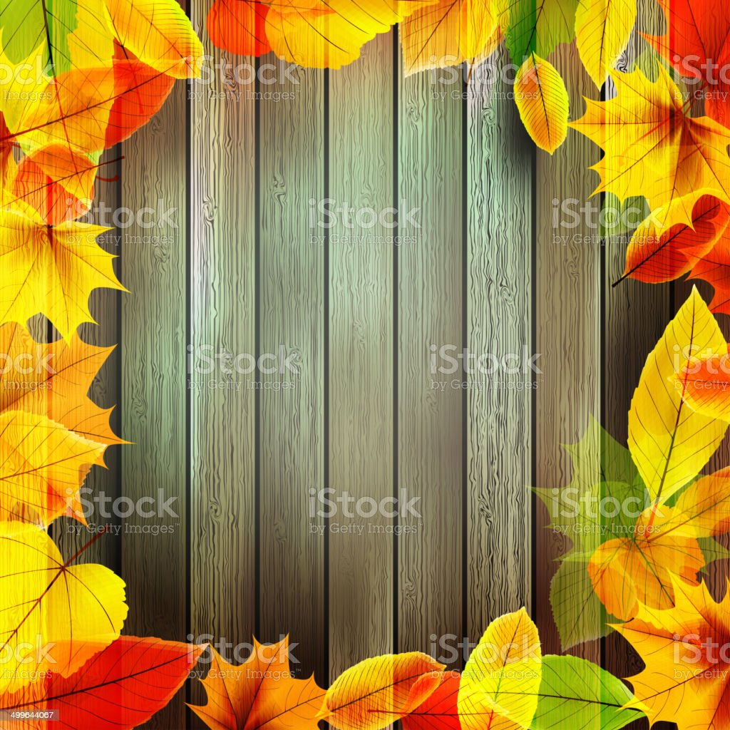 Yellow wet autumn leaves on the background. EPS10 royalty-free stock vector art