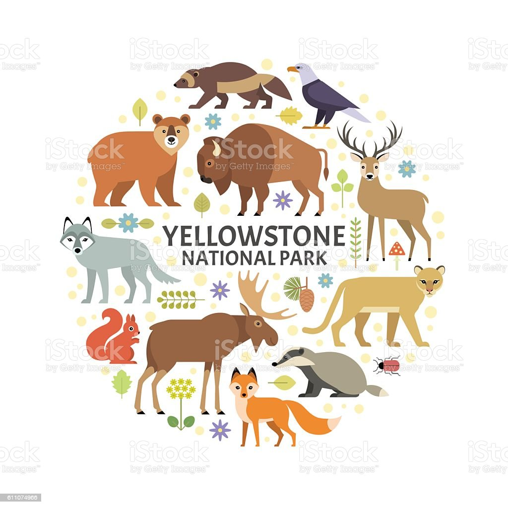 Yellowstone animals vector art illustration
