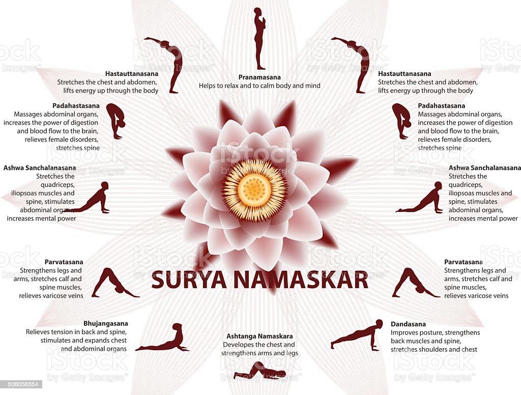 Yoga infographics, Surya Namaskar sequence vector art illustration