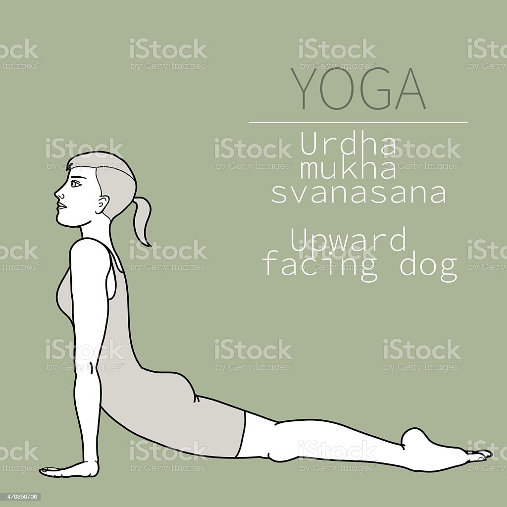 yoga pose vector art illustration