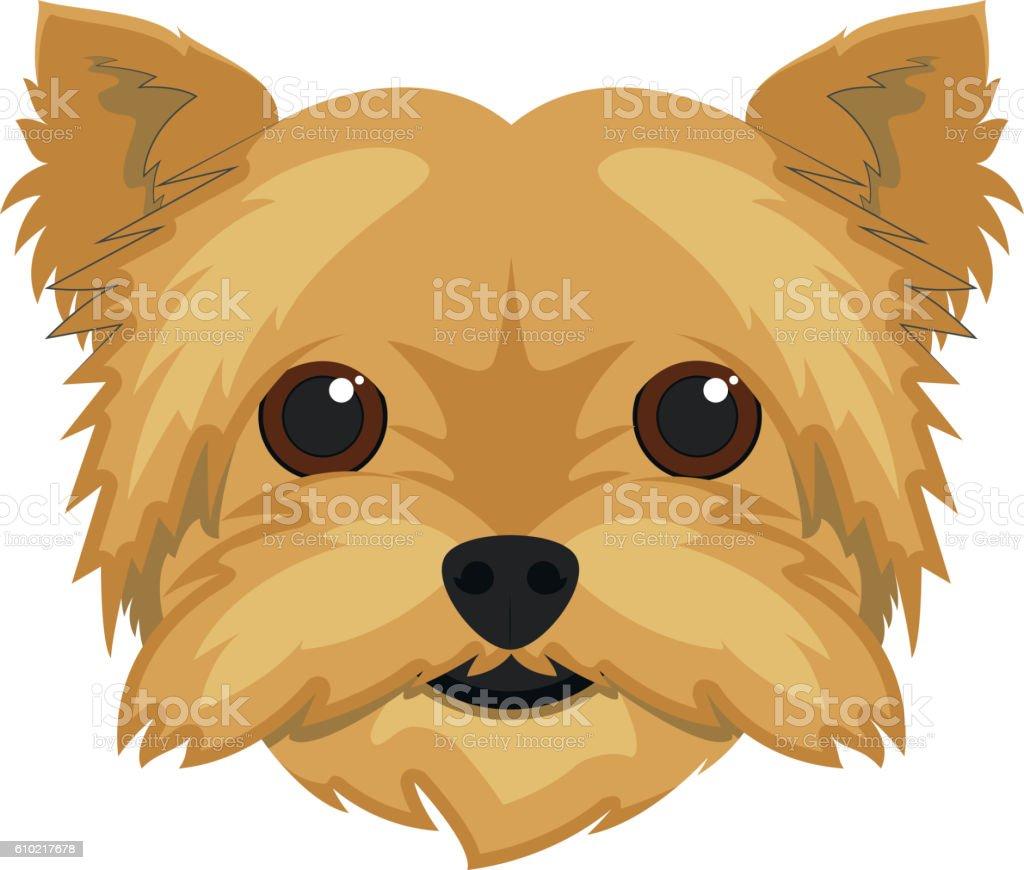Yorkshire Terrier dog isolated on white background vector illust vector art illustration