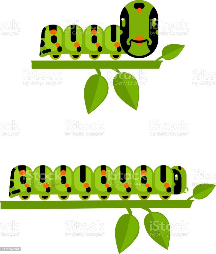 Young and big caterpillars set vector art illustration