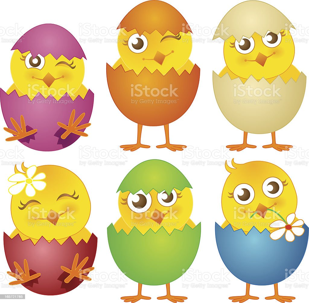 Young Birds Easter Chicks Vector Illustration Set royalty-free stock vector art