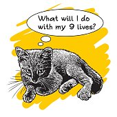 Young cat with speech bubbles and text about nine lives.