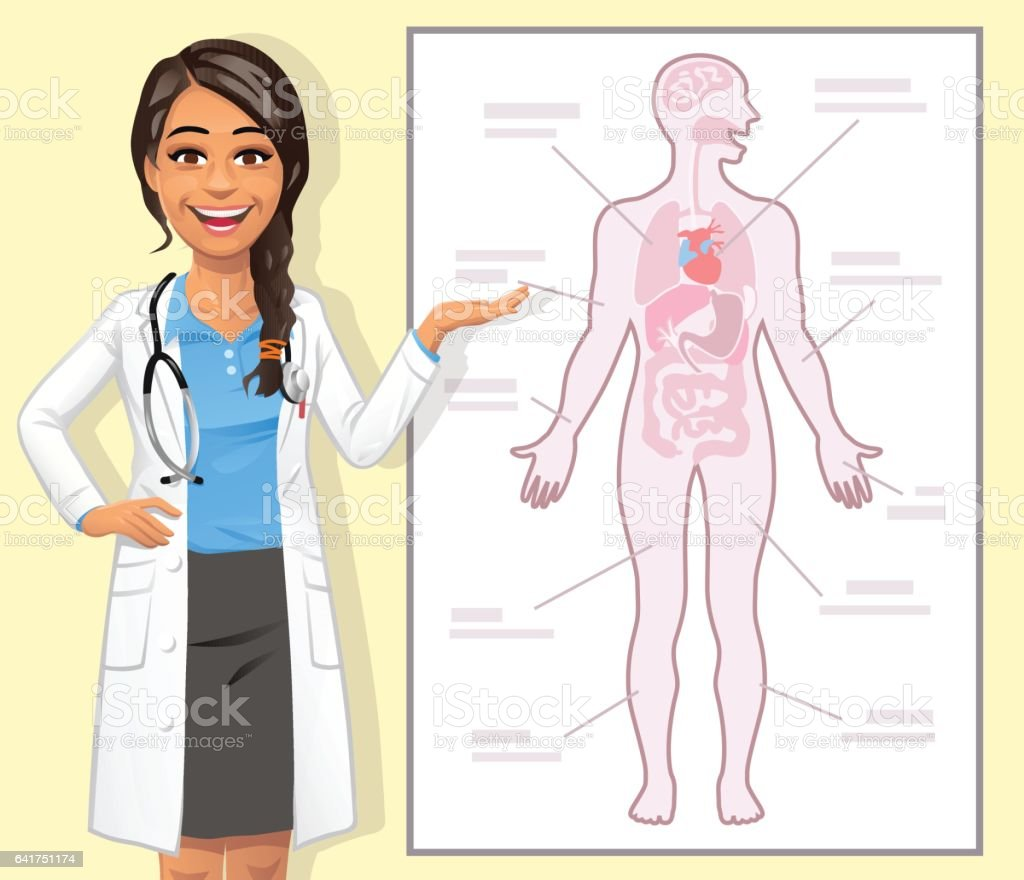 Young Female Doctor Explaining The Human Body vector art illustration