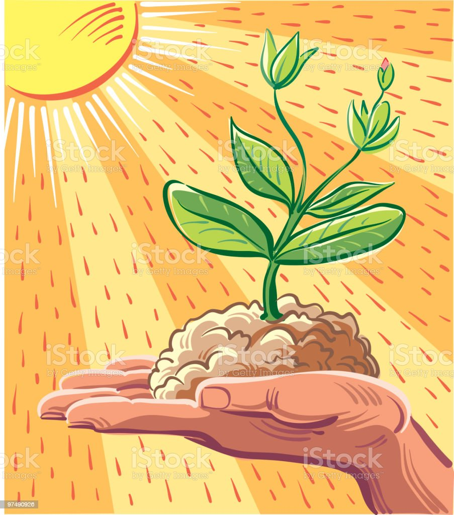 Young plant royalty-free stock vector art