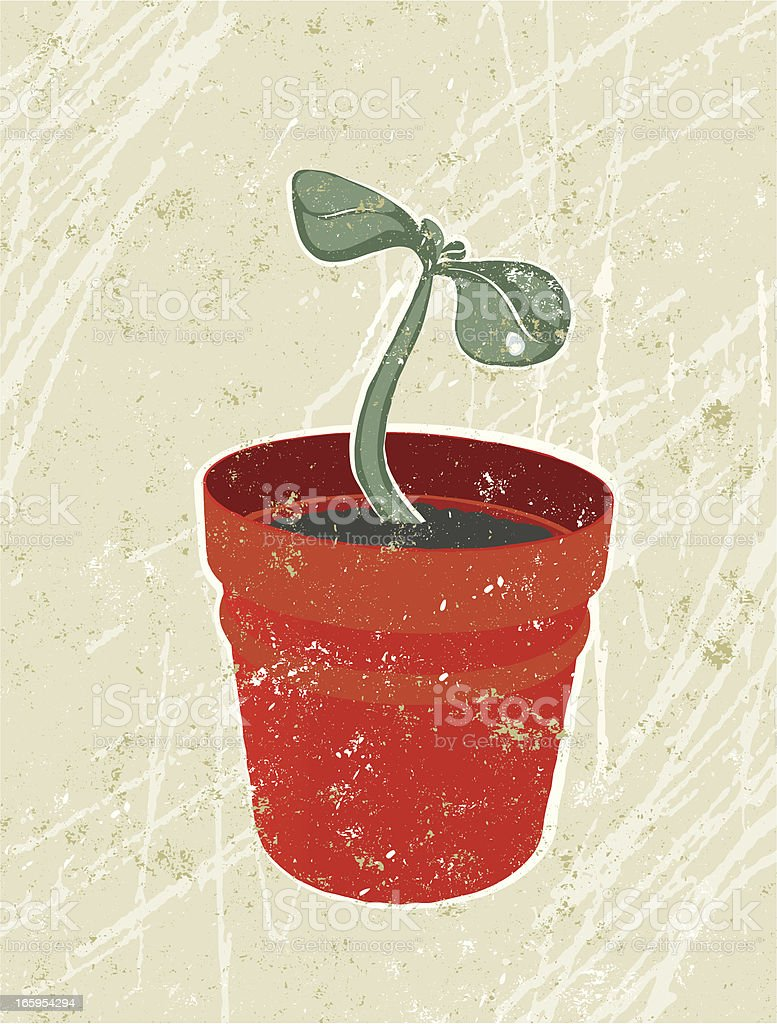 Young Seedling in a Plant Pot royalty-free stock vector art