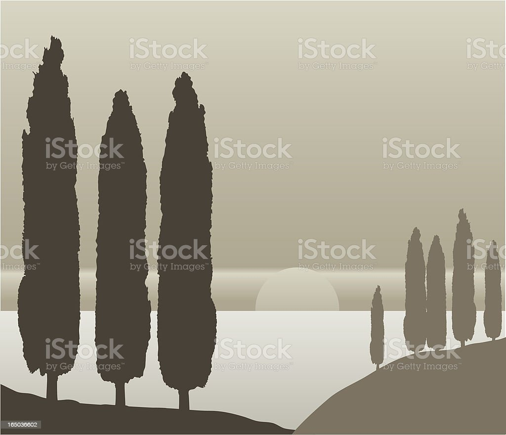 ?ypress trees silhouettes, Vector vector art illustration