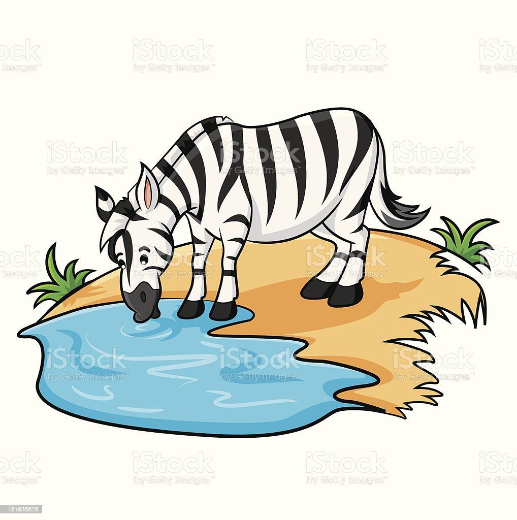 Zebra Cartoon vector art illustration
