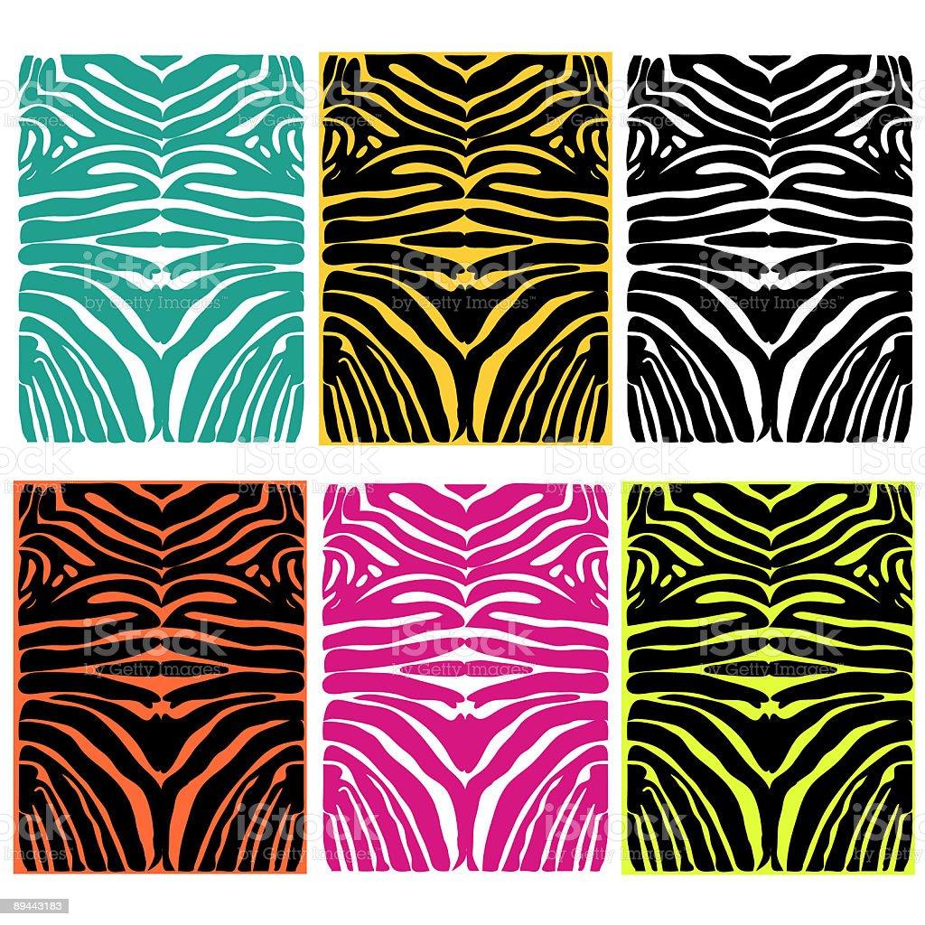 zebra hide textures vector art illustration