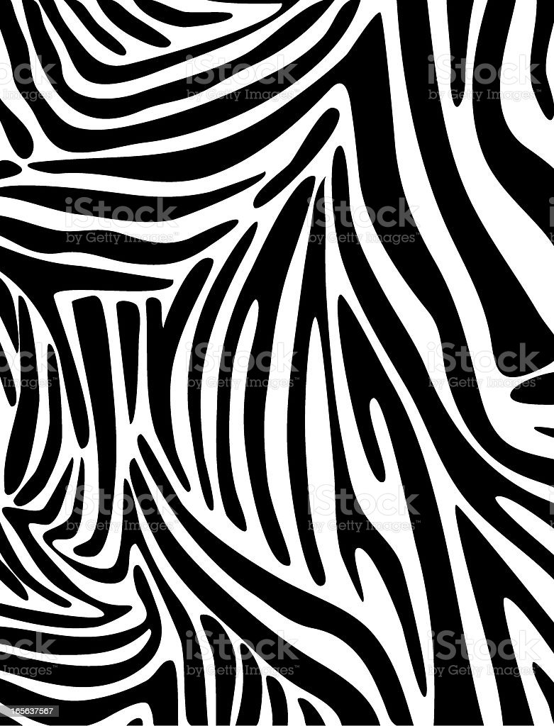 Zebra Skin Pattern royalty-free stock vector art
