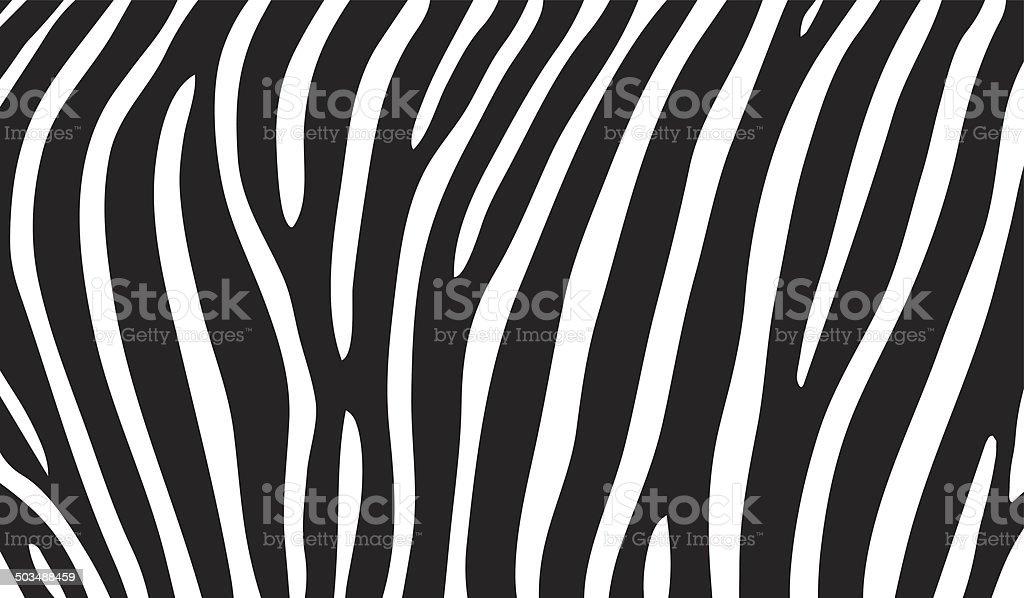 zebra stripes vector art illustration