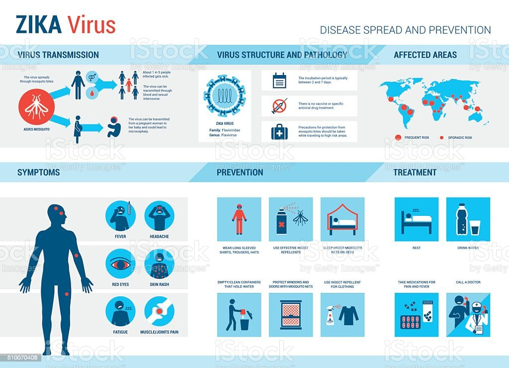 Zika virus infographic vector art illustration