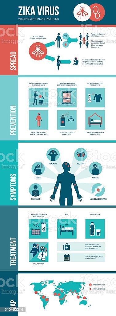 Zika virus infographic vector art illustration