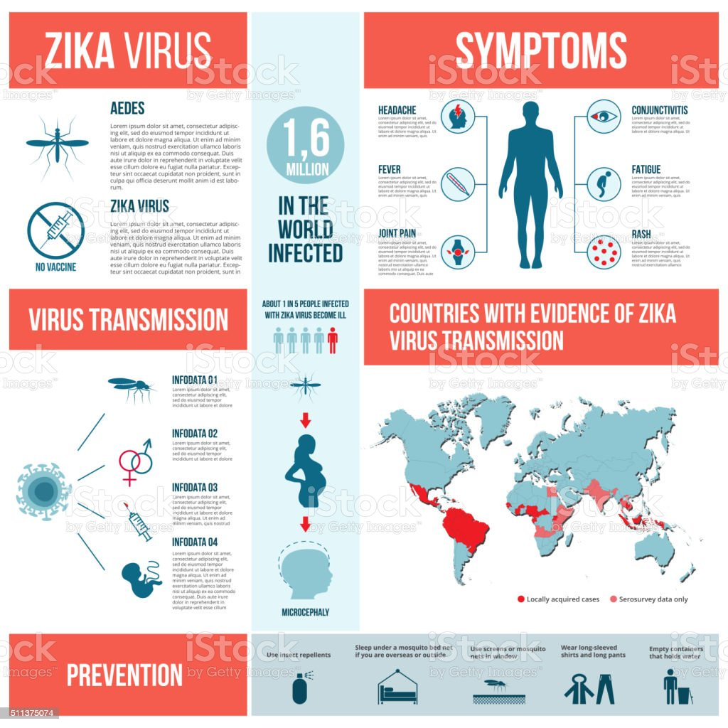 Zika virus infographics. vector art illustration