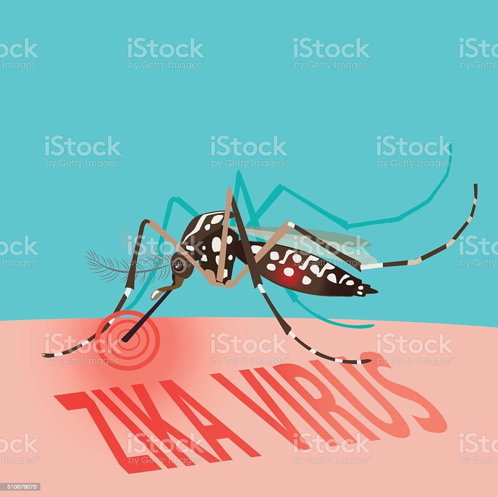 Zika Virus Outbreak Alert concept. Mosquito sucking blood. vector art illustration