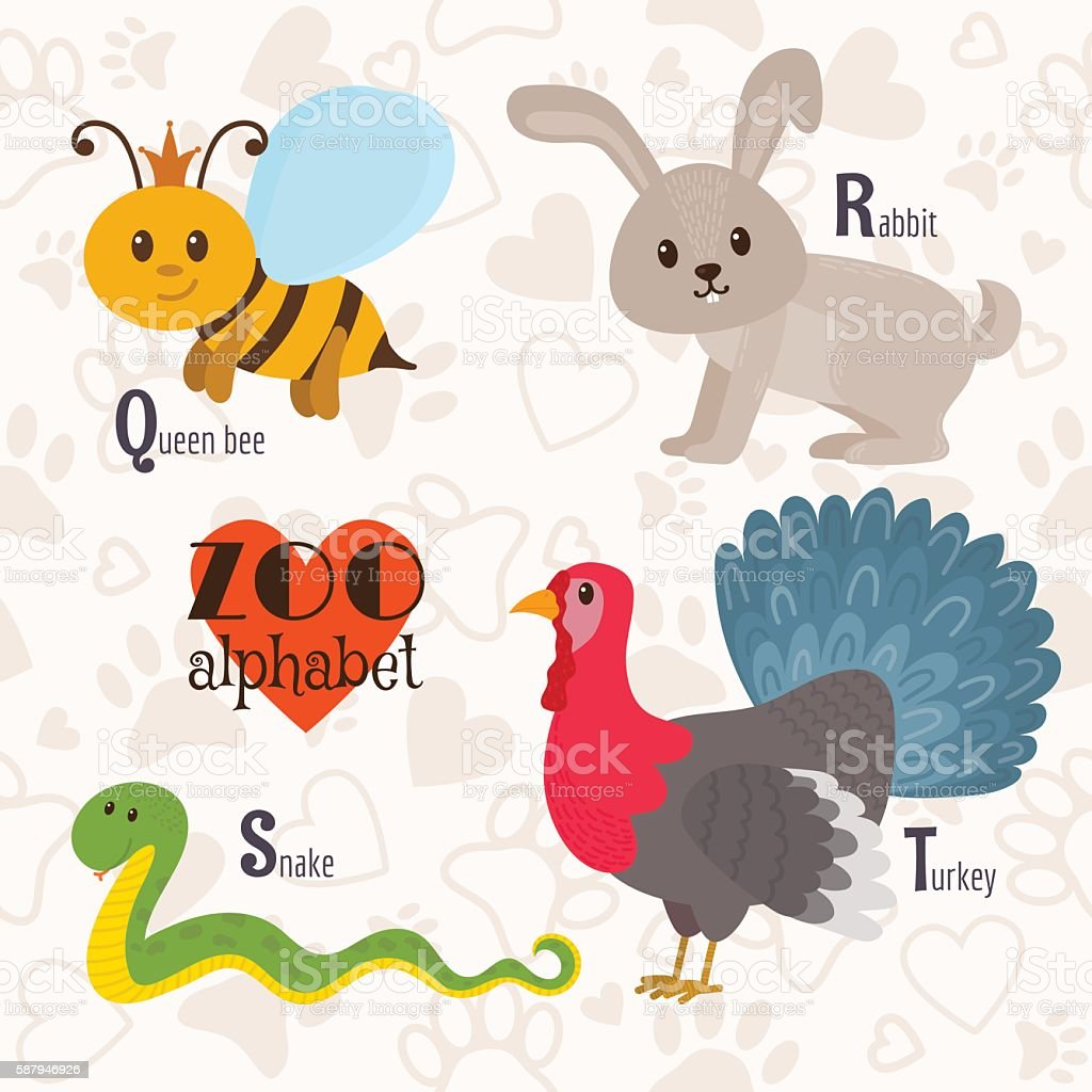 Zoo alphabet with funny animals. Q, r, s, t letters. vector art illustration