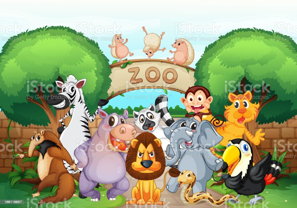 Zoo and animals royalty-free stock vector art