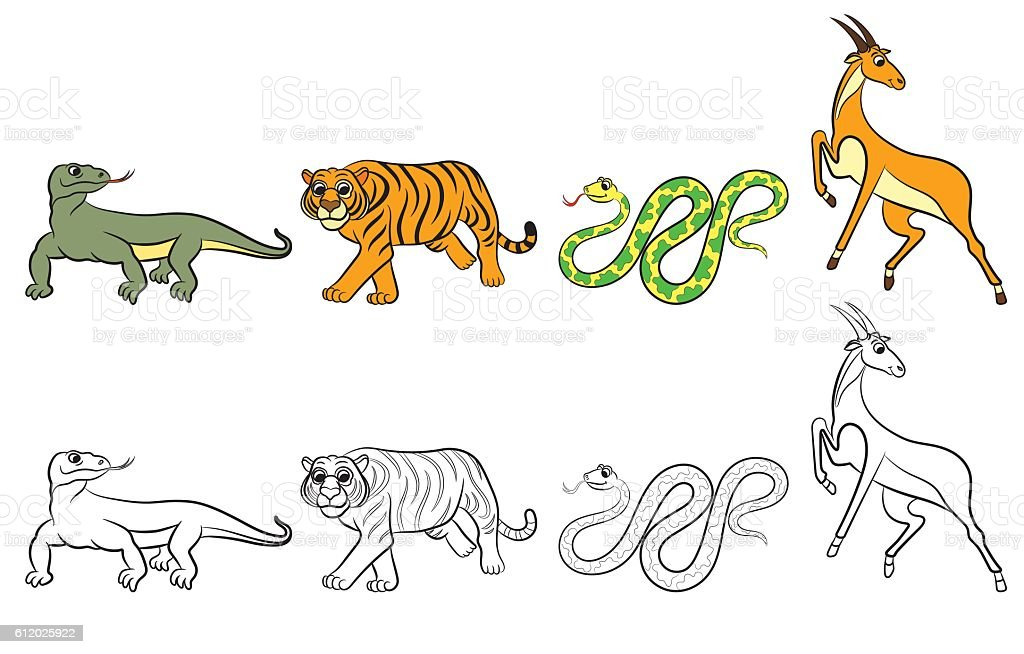 Zoo animals collection vector art illustration