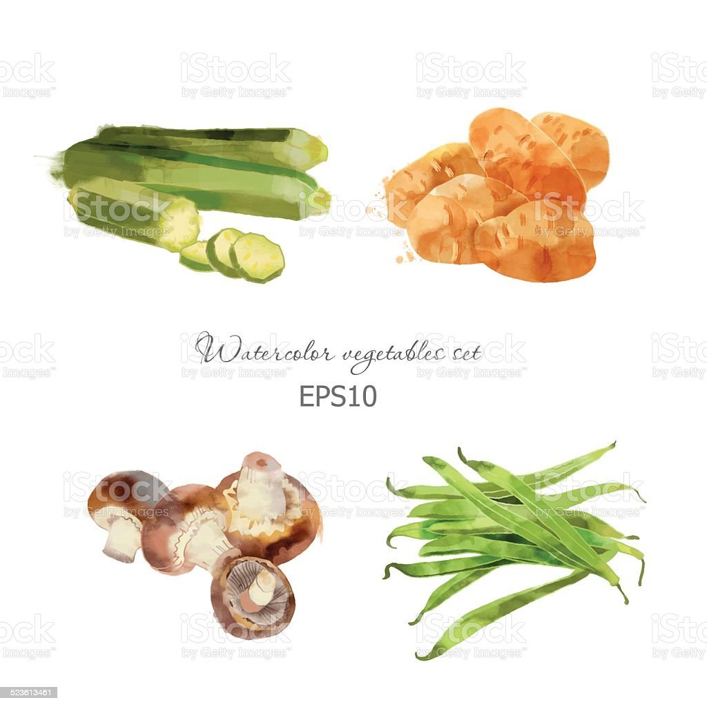 zucchini, potato, mushrooms, bean vector art illustration