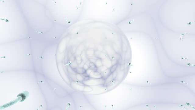 SPERM WHITE (HD) video