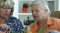 NUTRITION FOR THE ELDERLY-1080HD video