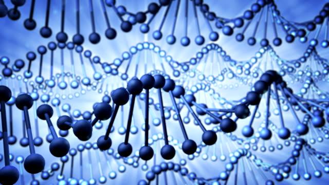 DNA video