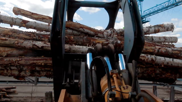 LOG PICKER DOZER AT LUMBER FACTORY AND TREES video