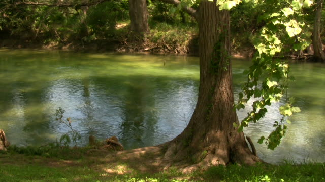 HD 1080i Guadalupe River in Texas 10 video