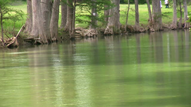 HD 1080i Guadalupe River in Texas 20 video