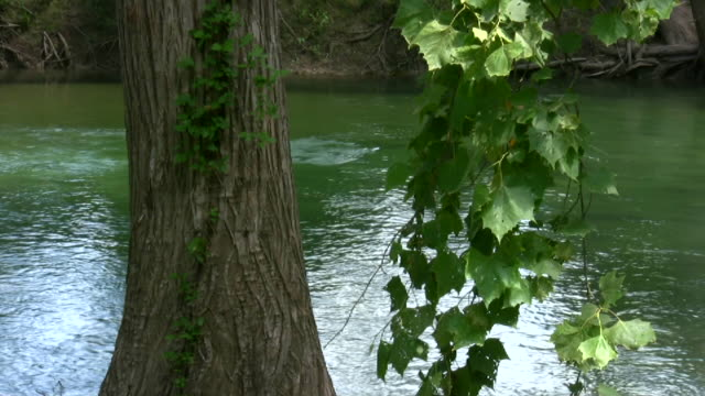 HD 1080i Guadalupe River in Texas 6 video