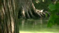 HD 1080i Guadalupe River in Texas 8 video