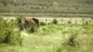 HD 1080i Horse Kicking and Running video