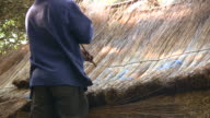 HD 1080i Laying Thatch Roof in South Africa 2 video