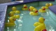 HD 1080i Rubber Duckies 2 video