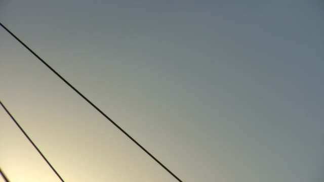 HD 1080i Silhouette of bungy trampoline jumping 2 video