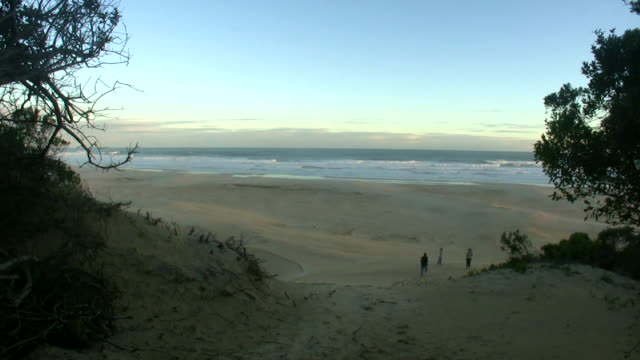 HD 1080i South African Beach 7 video