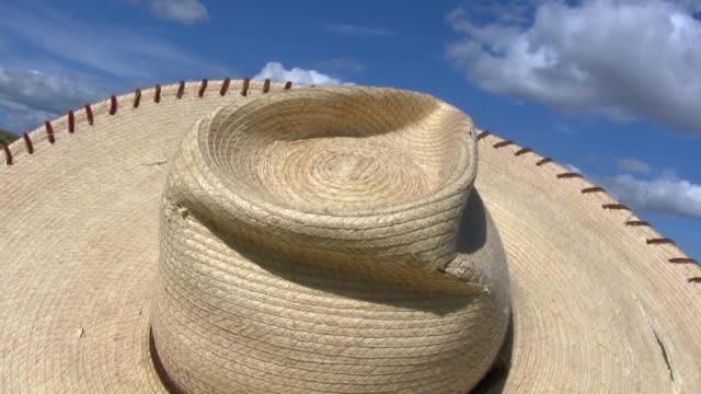 HD 1080i Straw Sombrero Hat in Wind video