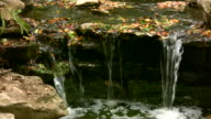 HD 1080i Stream over Rocks with Leaves 2 video