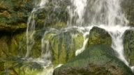 HD 1080i Waterfall with Moss 1 video
