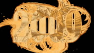 HDTV @25fps: Liquid Gold - 2009 video