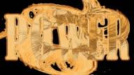 HDTV @25fps: Liquid Gold - Power video